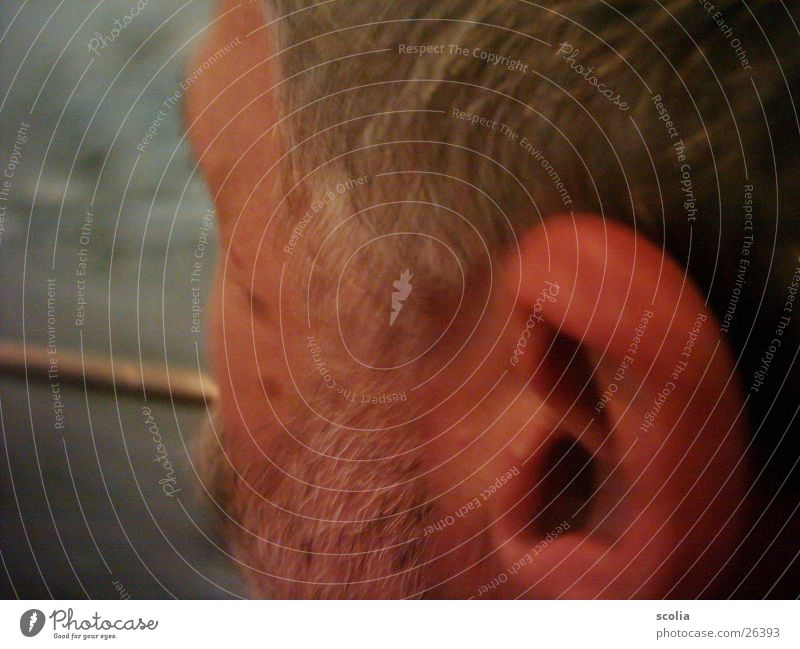 beard Facial hair Man Cheek Moustache Gray-haired Detail Ear Head Face