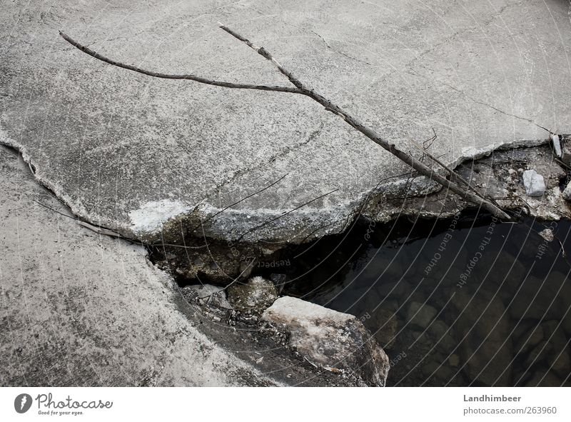 Concrete pond. Water Pond Gray Black & white photo Exterior shot Deserted Day Crack & Rip & Tear Exceptional