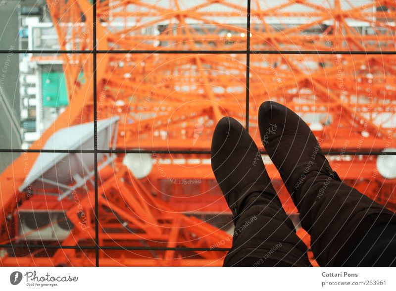 about Tokyo Tourist Attraction Tokyo Tower Footwear Boots Stand Tall Asia Japan Glass Steel Television tower Landmark Lookout tower Above Stability Colour photo