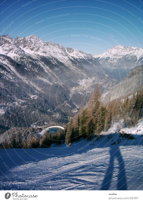 Tree Forest Snow Mountain Lake Blue sky Ski run