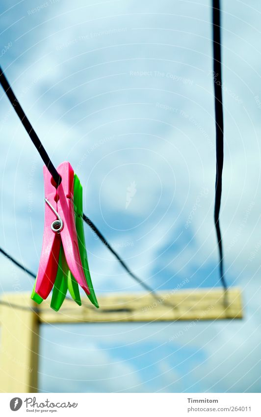 Sky Blue Green Vacation & Travel Summer Clouds Pink Simple Plastic Hang Clothesline Denmark Clothes peg