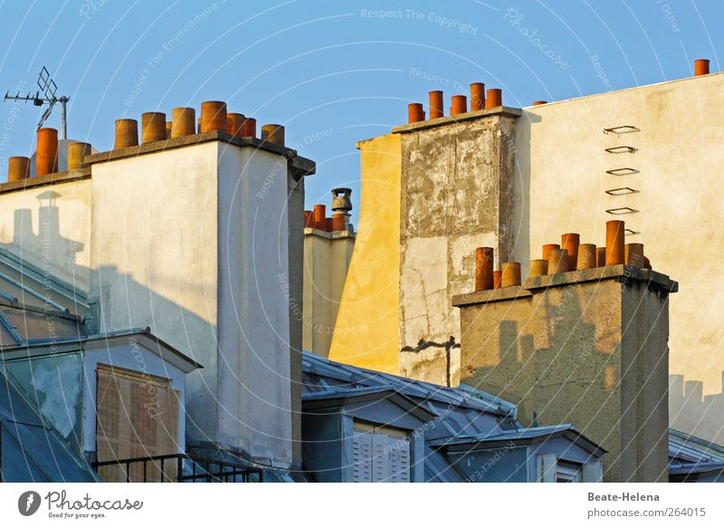 On the roofs of Paris Living or residing Flat (apartment) Capital city Building Window Roof Stone Sleep Blue Yellow Pink Sympathy Mansard Skylight Fire ladder