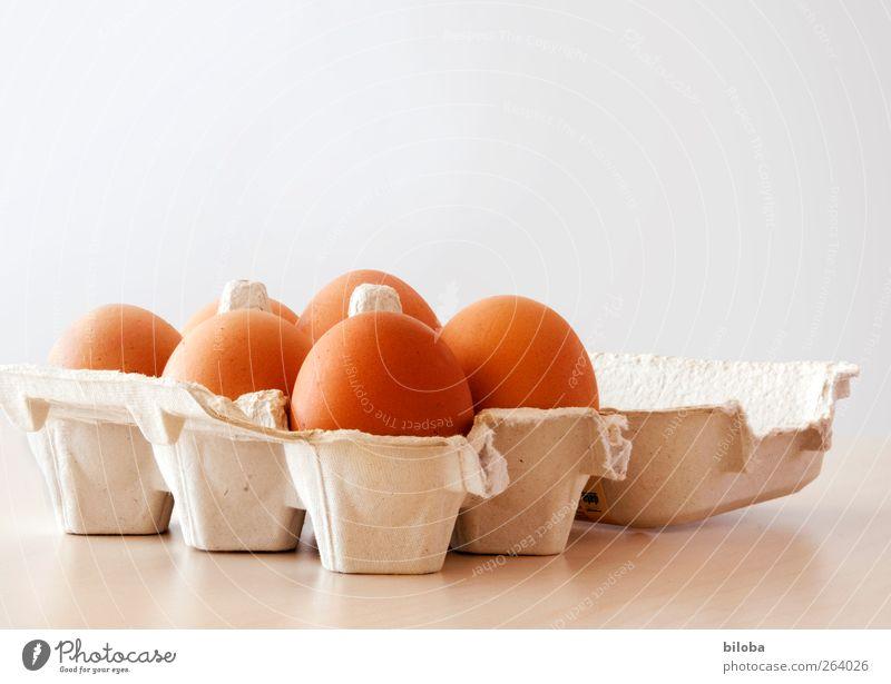 White Brown Organic produce Egg Easter egg Feasts & Celebrations Multiple