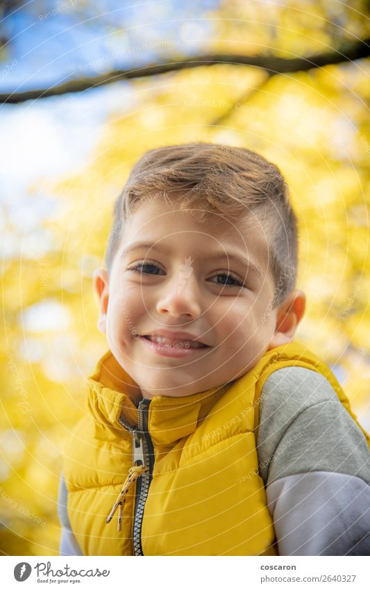 Cute kid against a yellow tree in autumn Lifestyle Joy Happy Beautiful Leisure and hobbies Vacation & Travel Freedom Child Human being Baby Toddler Boy (child)