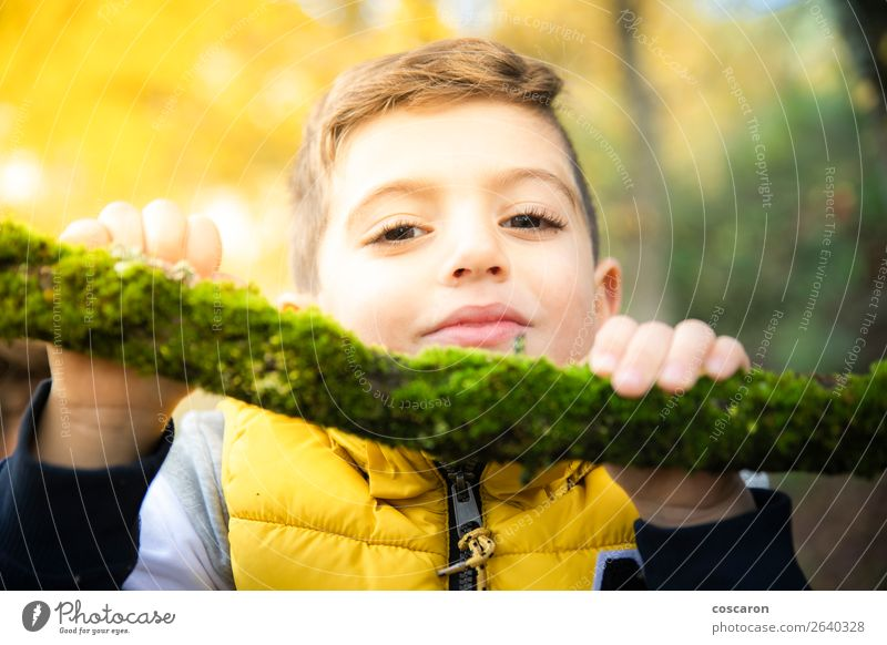 Beautiful child with a yellow vest in the forest in autumn Child Human being Vacation & Travel Nature Man Green Tree Leaf Joy Forest Winter Face Lifestyle