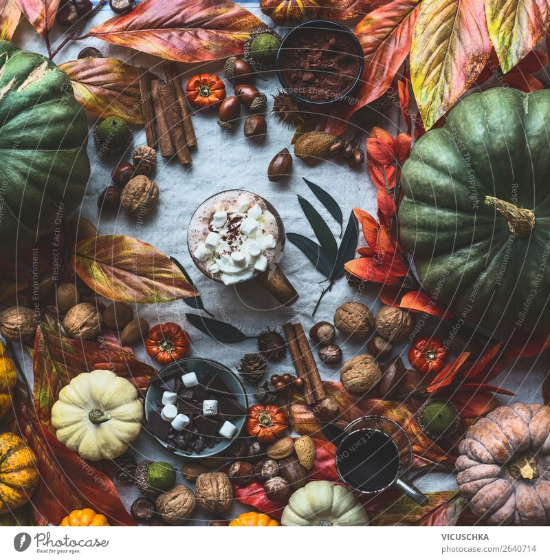 Life Warmth Autumn Interior design Style Living or residing Design Flat (apartment) Decoration Table Beverage Still Life Cup Autumn leaves Pumpkin Nut