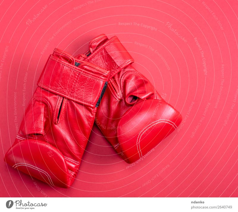 red sport leather boxing gloves on a red background Lifestyle Fitness Sports Clothing Leather Gloves New Above Red Protection Colour Competition Creativity