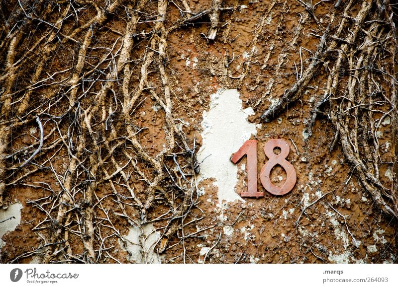 All the best, north traveller. Joy Feasts & Celebrations Nature Wall (barrier) Wall (building) Sign Digits and numbers Old Trashy Addressee Birthday