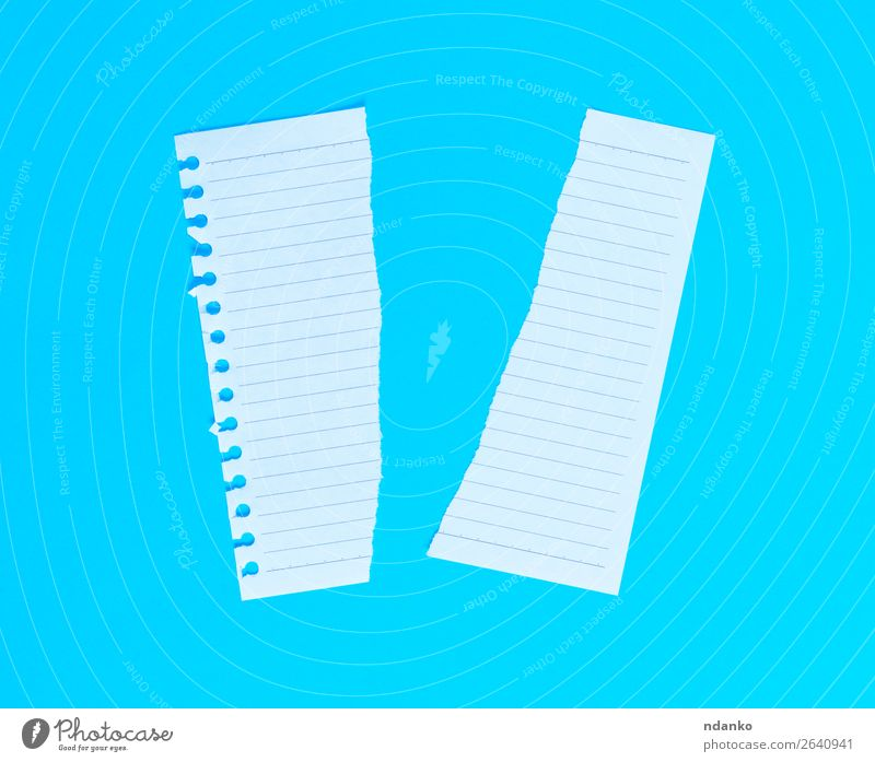 torn in half white blank sheet in line on blue background Education Office Paper Above Clean Blue White Idea Planning Torn Text Blank note Half Consistency