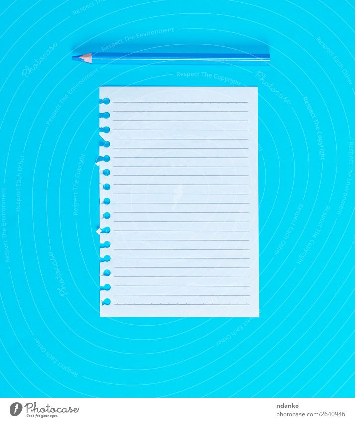 white blank sheet in line torn out of notepad School Office Business Paper Piece of paper Pen Wood Write Blue White Idea Study Pencil Spiral background Blank