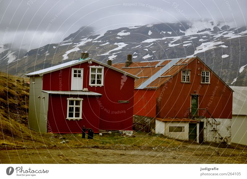 NORDREISENDER All the best Environment Nature Hill Mountain Snowcapped peak Fjord Iceland Djupavik Westfjord Village House (Residential Structure) Hut
