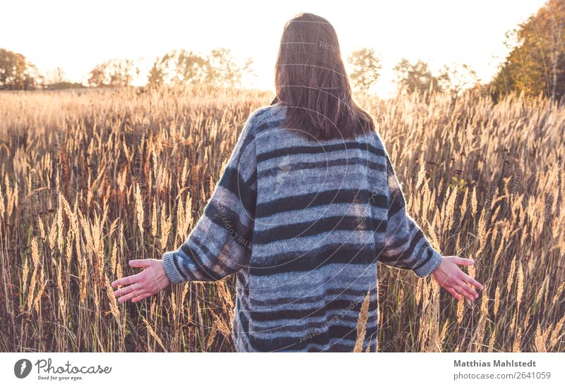 rambles Human being Feminine Young woman Youth (Young adults) 1 18 - 30 years Adults Nature Landscape Sunlight Autumn Beautiful weather Field Sweater
