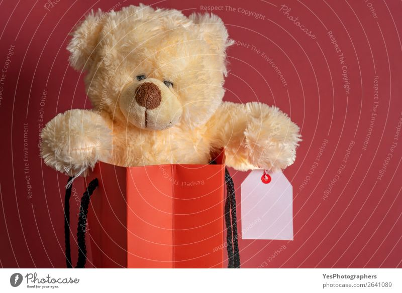 Stuffed toy in a shopping paper bag. Red background Shopping Feasts & Celebrations Christmas & Advent Business Teddy bear Package Love Sell Surprise blank label