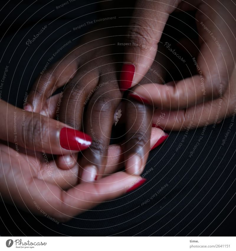 Careful Nail polish Feminine Hand Fingers 2 Human being Touch To hold on Passion Trust Safety Protection Safety (feeling of) Warm-heartedness Sympathy