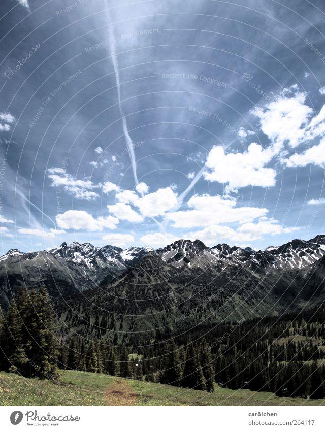 Nature Beautiful Environment Alps Beautiful weather Allgäu
