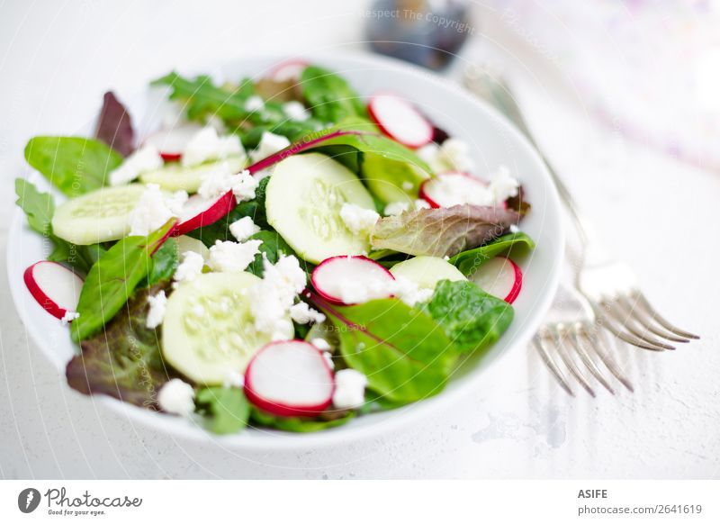 Mixed salad with baby leaves, radish, cucumber and feta cheese Cheese Vegetable Nutrition Lunch Dinner Vegetarian diet Diet Plate Bowl Fork Summer Baby Leaf