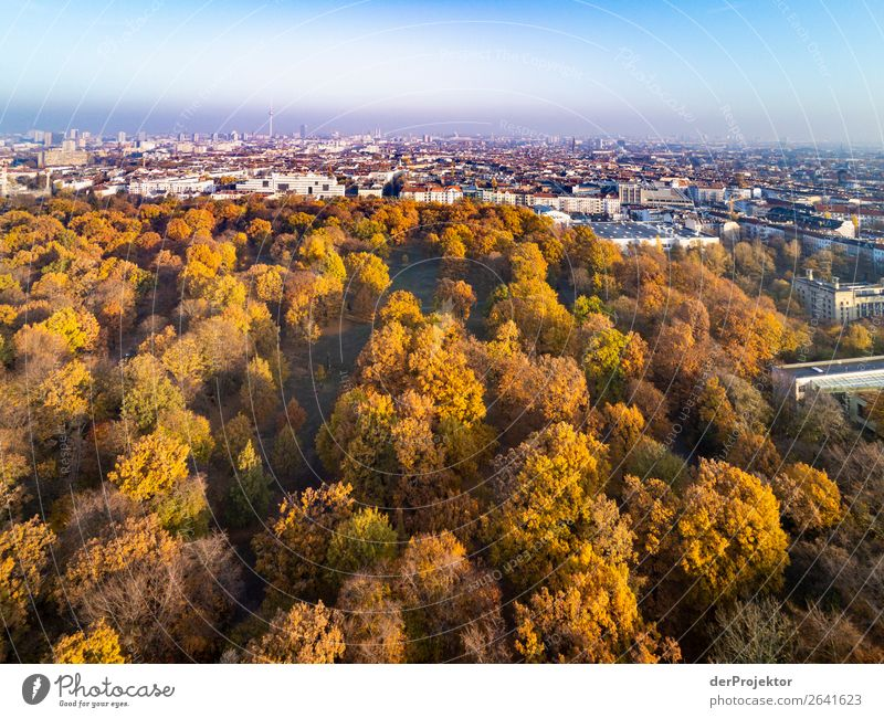 Berlin panorama with park Downtown Berlin Central perspective Deep depth of field Sunbeam Sunlight Shadow Light Morning Copy Space middle Copy Space bottom