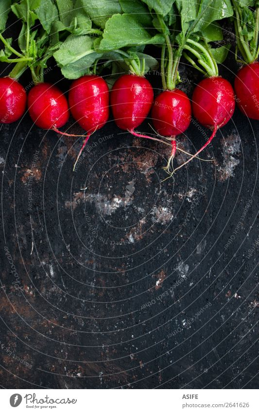 Wet radishes on a grunge background Vegetable Nutrition Vegetarian diet Diet Plant Leaf Drop Dark Fresh Small Natural Green Red Colour Raw Root row food healthy