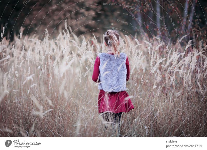 autumn love Human being Feminine Child Girl Infancy 1 8 - 13 years Environment Nature Landscape Plant Autumn Observe Dream Hiking Wait Blonde Free Natural Cute