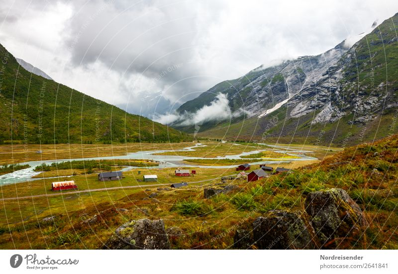 Norwegian landscape Vacation & Travel Tourism Mountain Hiking Agriculture Forestry Air Water Clouds Bad weather Fog Rain Grass Bushes Moss Fern Meadow Canyon