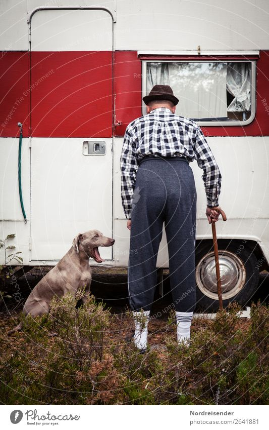 Human being Vacation & Travel Dog Man Old Animal Loneliness Adults Senior citizen Grass Tourism Fashion Living or residing Poverty Curiosity Male senior