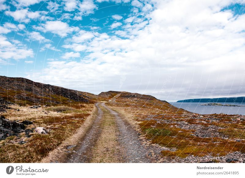Road to nowhere Vacation & Travel Tourism Adventure Far-off places Freedom Ocean Island Nature Landscape Elements Water Sky Clouds Beautiful weather Rock