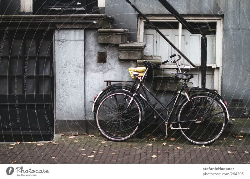 reverse House (Residential Structure) Stairs Sidewalk Colour photo Exterior shot Deserted Bicycle Parking area 1 Black Wall (building)