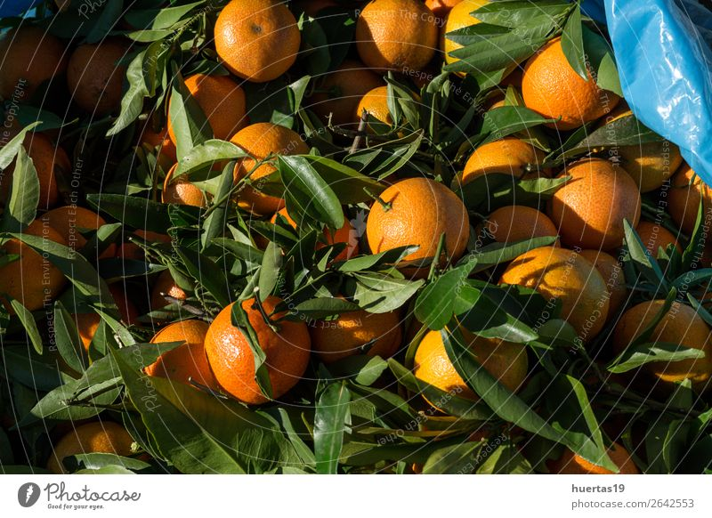 Fresh tangerines in season Food Fruit Orange Vegetarian diet Diet Juice Healthy Eating Natural Above Green citrus Detox Mature vitamins Organic Vantage point
