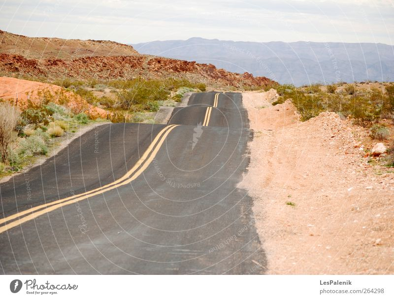 Bumpy Road Nature Red Plant Summer Landscape Mountain Warmth Earth Climate Natural USA Desert Hill Highway Traffic infrastructure Drought