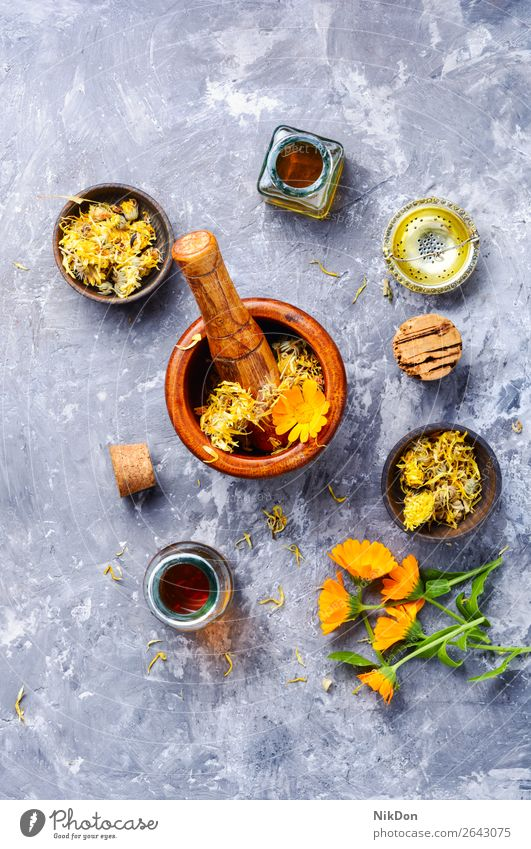 Fresh and dried calendula flowers Calendula officinalis herb marigold plant medicine yellow healthy natural mortar pestle nature flora floral orange petal