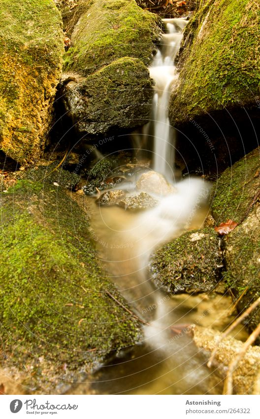 Nature Water White Green Plant Environment Spring Sand Stone Earth Weather Beautiful weather Pure Moss Brook Waterfall