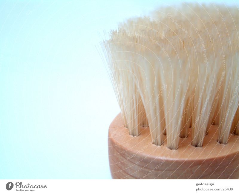 brush Bathroom Cleaning Soap Abstract Hollow Bathtub Foam Shower gel Soap suds Massage brush Burl Gloves Orange peel Against Wood Living or residing loofah