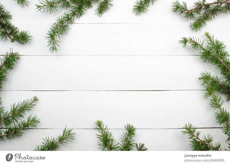 Fir twigs on white wood background whit copy space. Christmas & Advent Green White Red Winter Snow Happy Feasts & Celebrations Above Design Decoration
