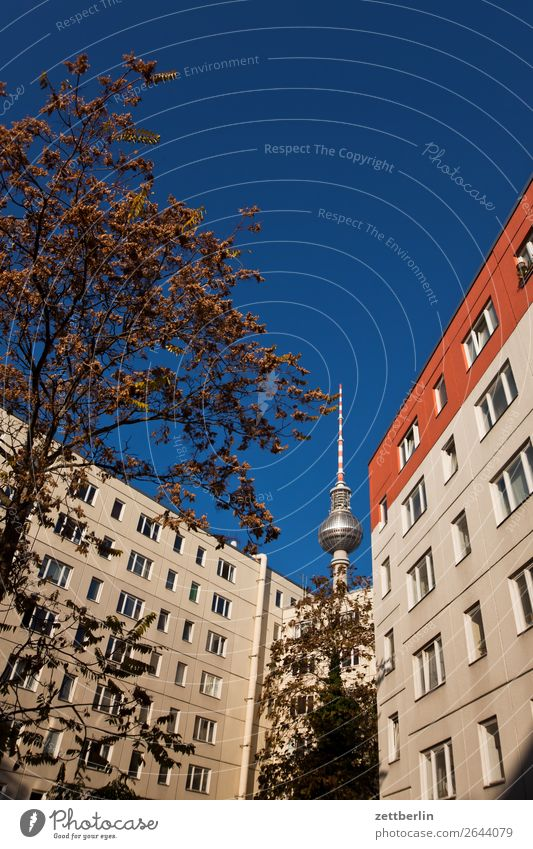 Television tower, seen from the Nikolai quarter Alexanderplatz Architecture Berlin Office City Germany Berlin TV Tower Radio technology Worm's-eye view