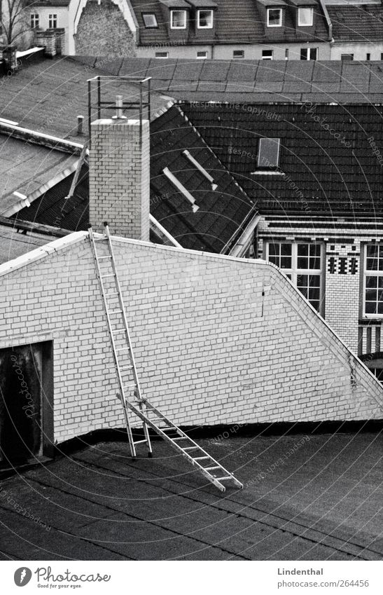 Ladder of robbers on Berlin roofs Roof Above Chimney Chimney sweep House (Residential Structure) Black & white photo Deserted Construction Exceptional 2 Conquer