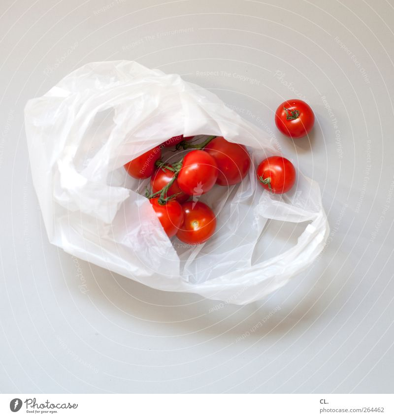 tomatoes Food Vegetable Tomato Organic produce Vegetarian diet Shopping Healthy Healthy Eating Life Fresh Delicious Juicy Red Paper bag Deserted Multiple
