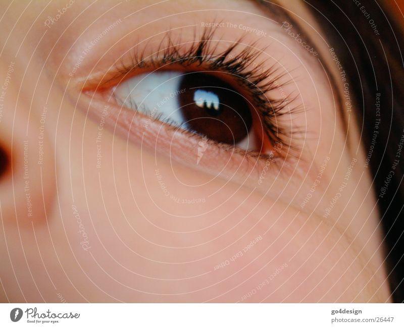 Woman Child Girl Face Eyes Skin Nose Cheek Eyelash Song Eyebrow Lens Iris