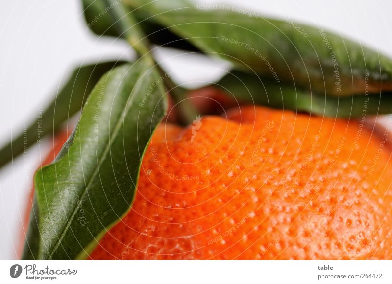 Green Leaf Nutrition Food Healthy Orange Fruit Natural Esthetic Uniqueness Healthy Eating Organic produce Exotic Vegetarian diet Tangerine