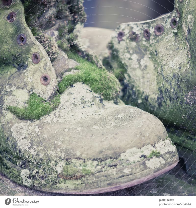 Shoes weathered and overgrown with moss Art Moss Leather Boots Collector's item Old Growth Retro Green Creativity Culture Whimsical Transience Overgrown