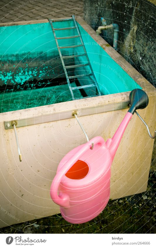 Moody Pink Wait Authentic Illuminate Uniqueness Swimming pool Kitsch Turquoise Ladder Cemetery Gardening Checkmark Tap Basin Watering can