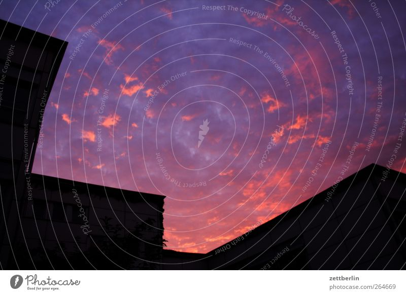 Sky in the evening Environment Nature Clouds Sun Sunrise Sunset Good Dusk Colour photo Multicoloured Exterior shot Deserted Copy Space left Copy Space right