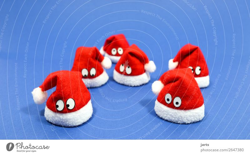 christmas team blue V Cap Exceptional Cute Blue Red White Santa Claus hat Meditative Eyes Christmas decoration Colour photo Studio shot Close-up Deserted