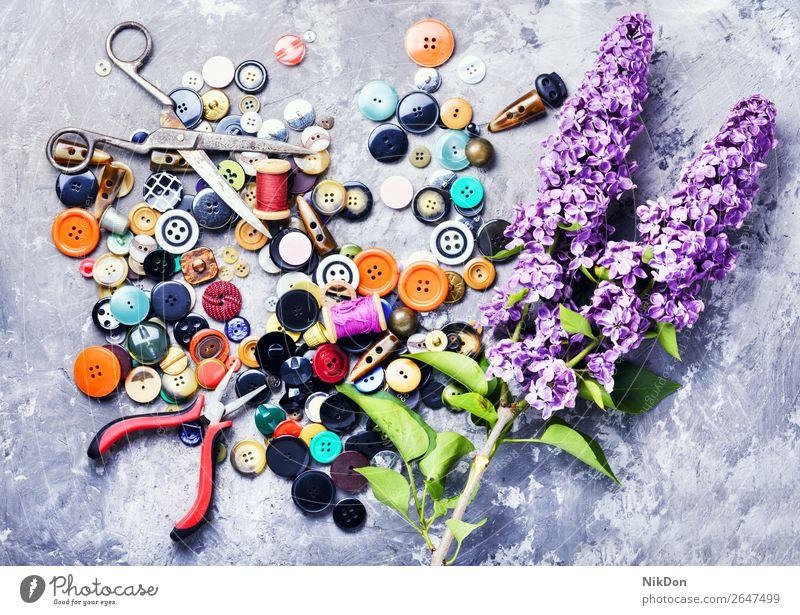 Bright buttons and lilac branch making thread sewing craft tool needlework flower purple handmade spool bobbin clothing springtime dressmaking scissors design