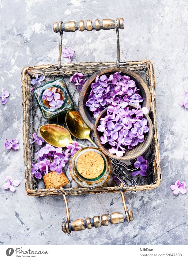 Bottle of lilac essential oil extraction essence herbalist tinctures herbalism flower medicine aroma purple nature aromatic health spa cosmetic bottle perfume