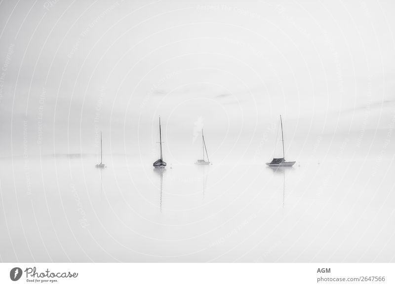 Sunrise at Lake Ammersee Lifestyle Joy Leisure and hobbies Sailing Vacation & Travel Tourism Trip Summer Sports Aquatics Landscape Water Sky Sunset Fog Deserted
