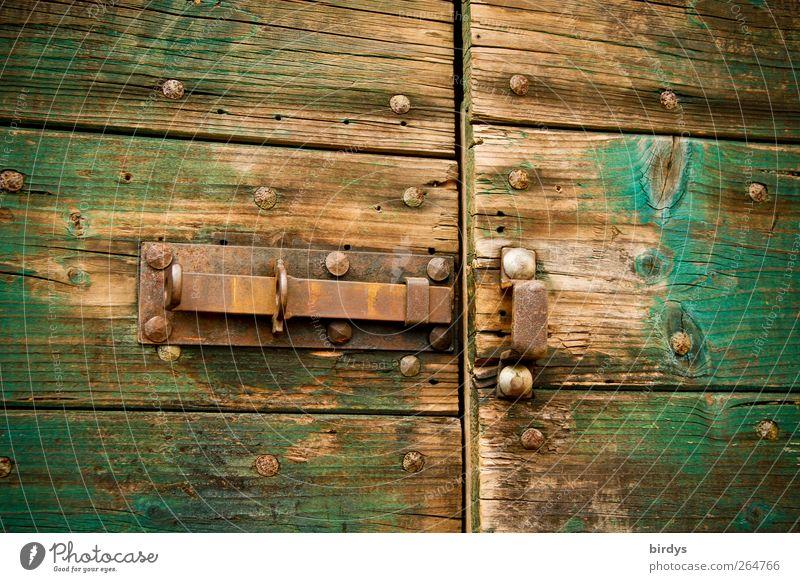 open doors Door Wood Metal Old Brown Green Lock Locking bar Barn shed door Rust Abrasion Open stable door Wooden door Colour photo Exterior shot Deserted