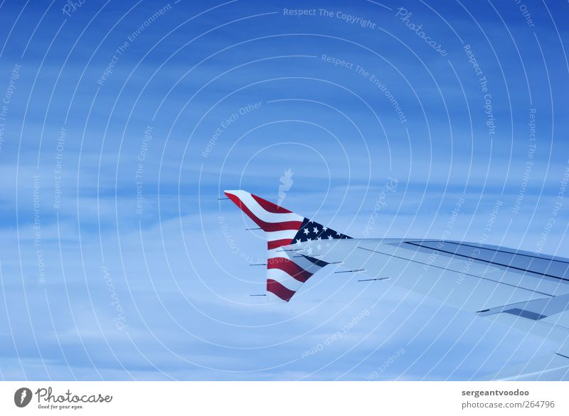 Stars and Stripes Vacation & Travel Freedom Aviation Technology Sky Means of transport Airplane View from the airplane Wing Sign Flag American Flag Flying