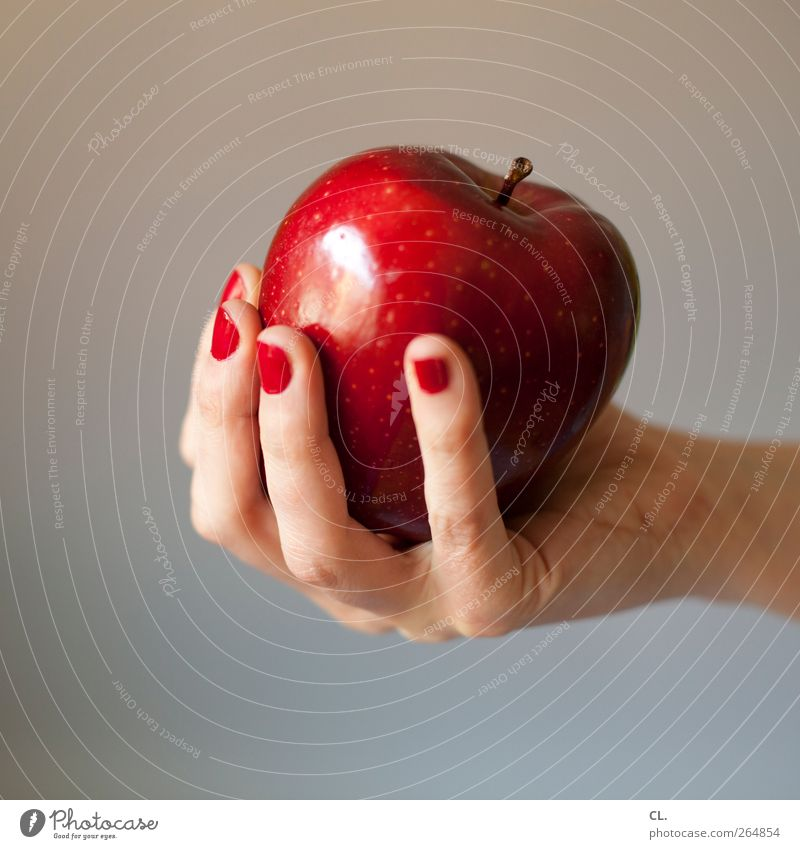 apple Food Fruit Apple Nutrition Eating Organic produce Vegetarian diet Diet Human being Feminine Woman Adults Hand Fingers 1 18 - 30 years Youth (Young adults)