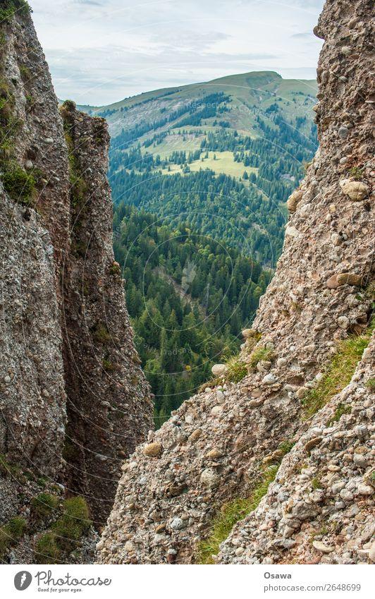 nail flea Germany Allgäu Alps Mountain Rock Building Peak Landscape Nagelfluhkette Hiking Mountaineering Climbing Nature Alpine pasture High Alps Sky Summer