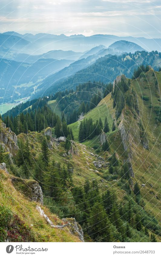 Nailfluh chain Germany Allgäu Alps Mountain Rock Building Peak Landscape Nagelfluhkette Hiking Mountaineering Climbing Nature Alpine pasture High Alps Sky